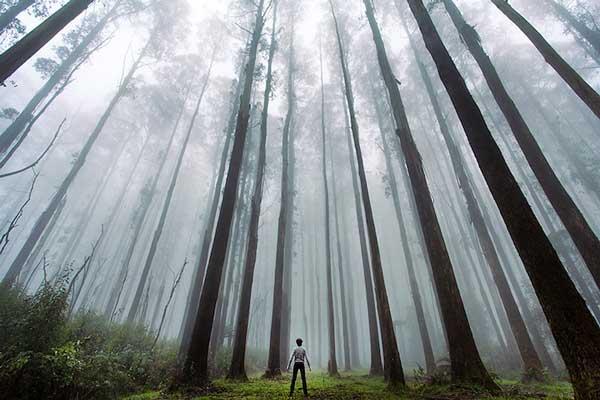 perierga.gr - Οι άνθρωποι μοιάζουν ασήμαντοι μπροστά στο μεγαλείο της φύσης!