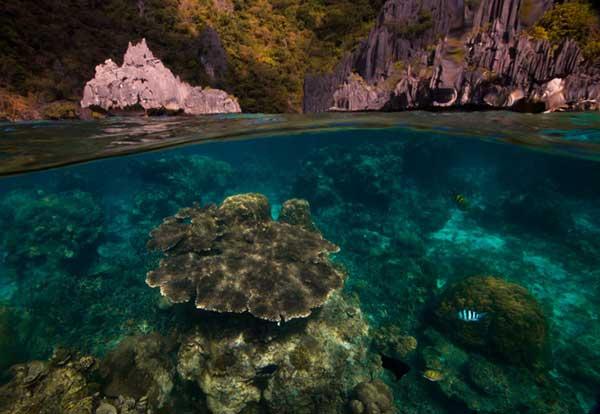 perierga.gr - Υπέροχες λήψεις πάνω και κάτω από τη θάλασσα!
