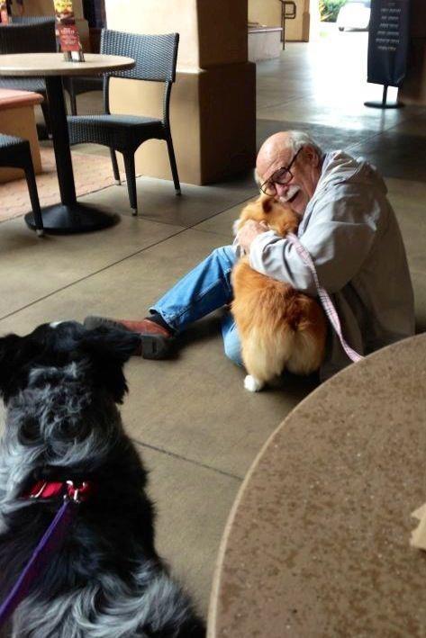 perierga.gr - 18 λόγοι για να είσαι ευγνώμων στον σκύλο σου!