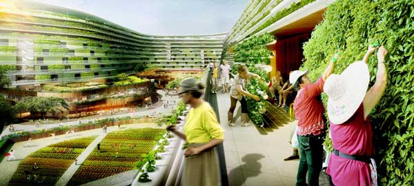 perierga.gr - Homefarm: Μια αστική φάρμα σε πολυκατοικία!