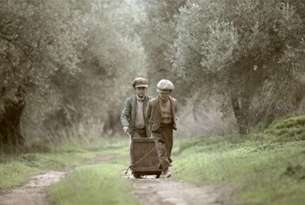 Perierga.gr - Το μάζεμα της ελιάς. Ένα εκπληκτικό φιλμ για μια ελληνική παράδοση αιώνων