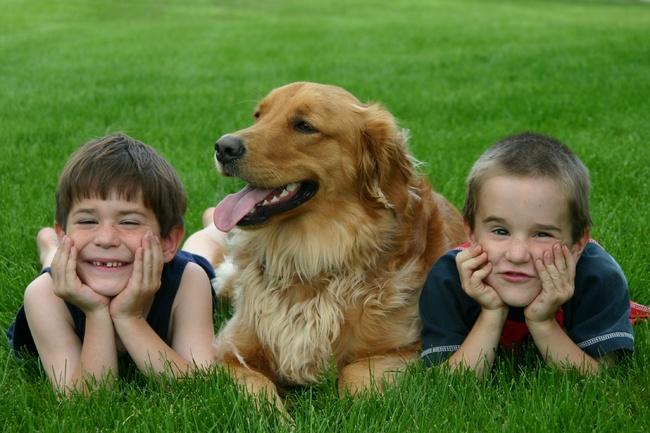 perierga.gr - 10 σπουδαίοι λόγοι που ένα παιδί πρέπει να μεγαλώσει με κατοικίδιο!