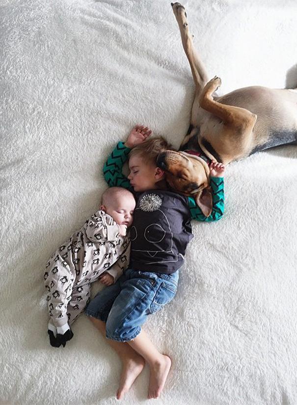 perierga.gr - Το αγοράκι που κοιμάται με το σκυλί του... απέκτησε αδελφούλα!