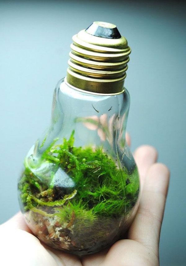perierga.gr - Νέες χρήσεις για τους λαμπτήρες φωτισμού!