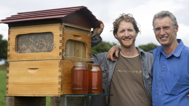 perierga.gr - Αυτόματη κυψέλη συλλέγει το μέλι χωρίς ενόχληση!