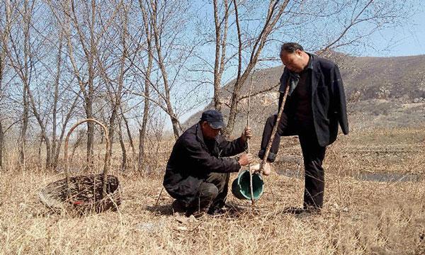 perierga.gr - Τυφλός και ανάπηρος φύτεψαν 10.000 δέντρα!