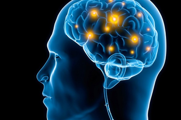 perierga.gr - Ο μορφωμένος εγκέφαλος αναρρώνει 7 φορές γρηγορότερα!
