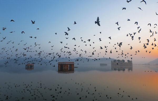 perierga.gr - Οι πρώτες φωτογραφίες από το διαγωνισμό National Geographic 2015