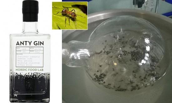 perierga.gr - Τζιν παρασκευάζεται από μυρμήγκια!