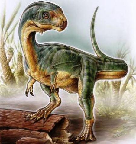 "perierga.gr - Δεινόσαυρος ""μωσαϊκό"" ανακαλύφθηκε στη Χιλή"