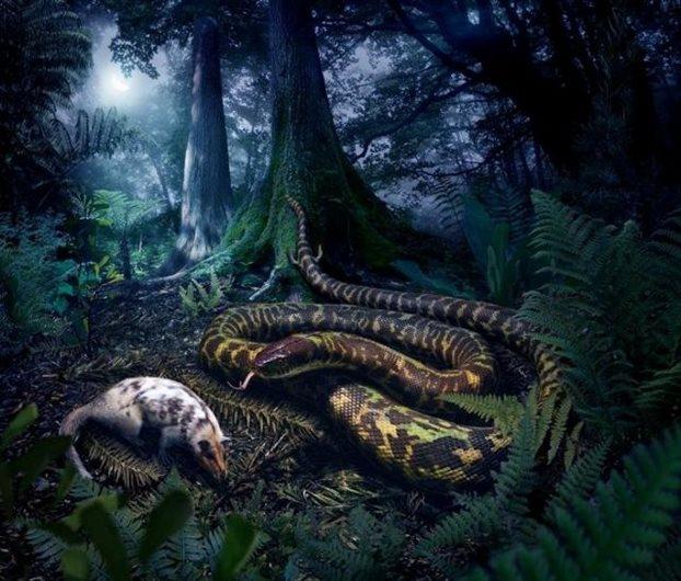 perierga.gr - Τα πρώτα φίδια περπατούσαν!