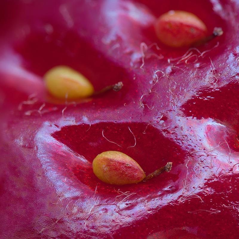 perierga.gr - Η επιφάνεια της φράουλας!