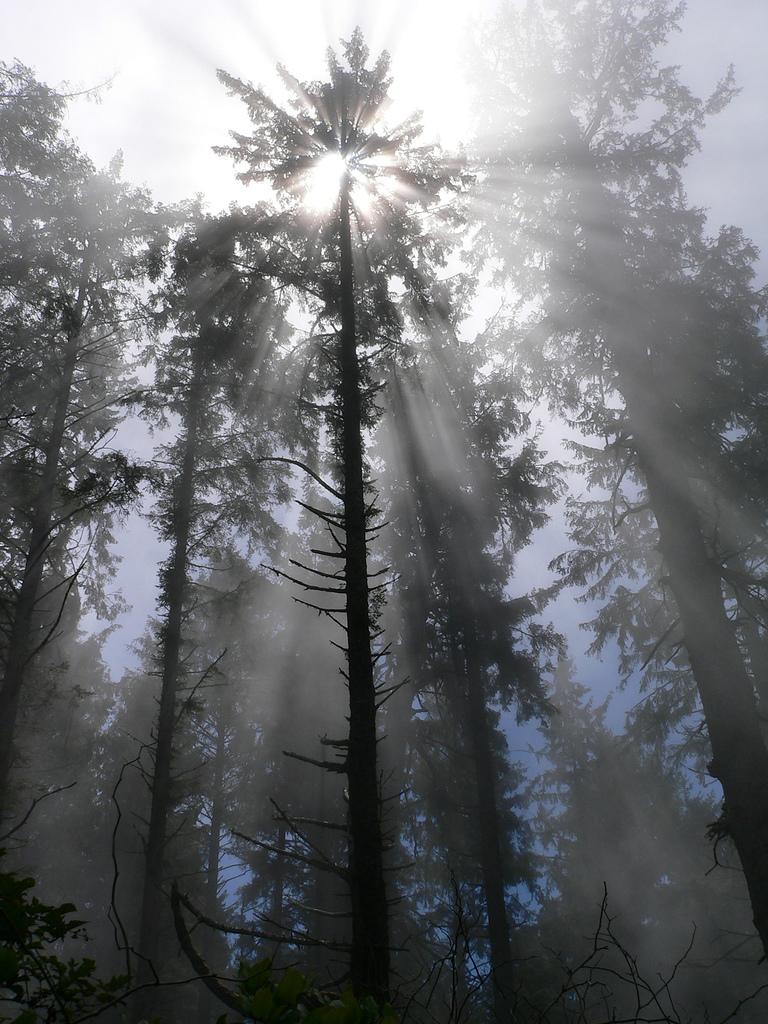 perierga.gr - Εντυπωσιακές ηλιαχτίδες στην κάμερα!