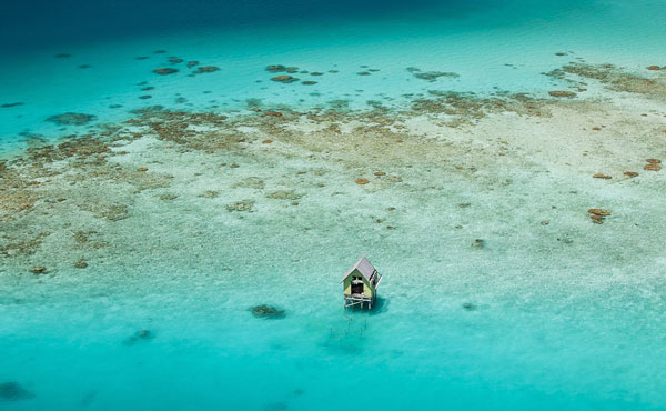 perierga.gr - Tikehau: Μια όαση στη θάλασσα!