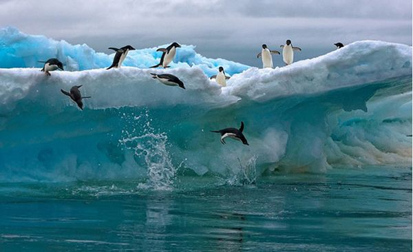 perierga.gr - Ταξίδι με drone στην Ανταρκτική!