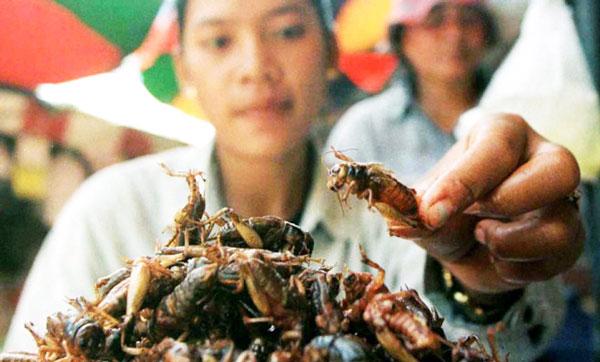 perierga.gr - Επτά λόγοι για να τρώτε έντομα!