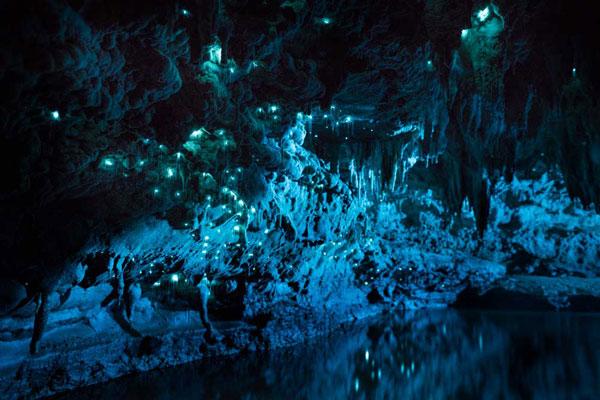 perierga.gr - Σπηλιά φωτίζεται μαγευτικά από... έντομα!