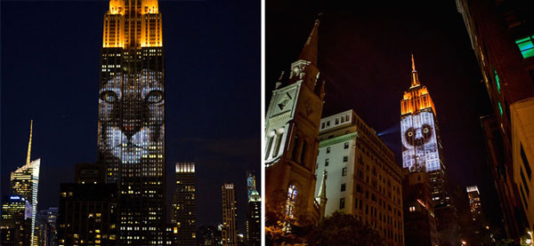 perierga.gr - Εικόνες απειλούμενων ειδών φώτισαν το Empire State Building!