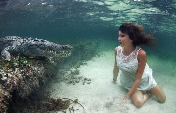 perierga.gr- Μοντέλο ποζάρει υποβρυχίως δίπλα σε... κροκόδειλους!