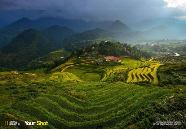 perierga.gr - Διαγωνισμός για το εξώφυλλο του National Geographic!