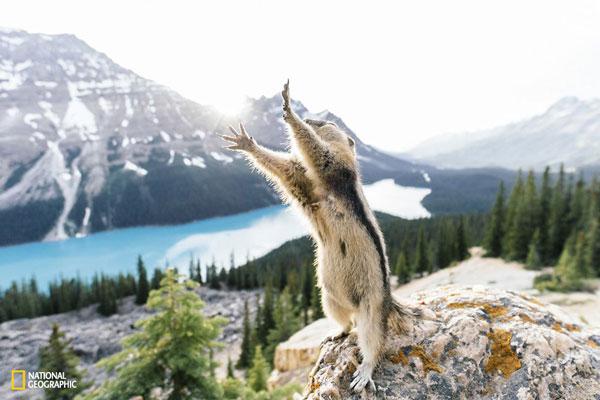 Απίθανες εικόνες από διαγωνισμό του National Geographic!