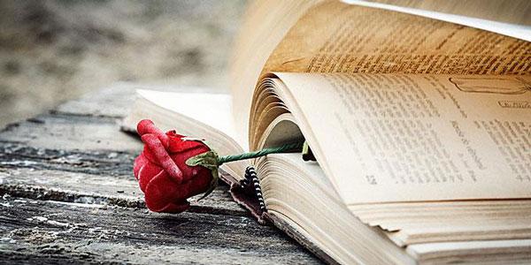 perierga.gr - Άγνωστα στοιχεία για την αγάπη & τον έρωτα!