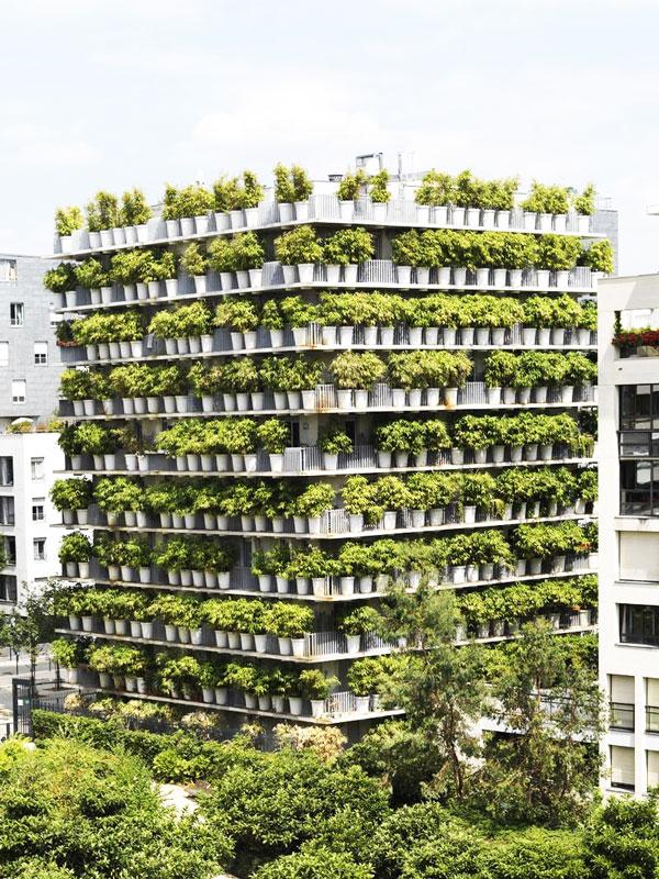 perierga.gr - Γλάστρες με φυτά κάνουν πολυκατοικία... αόρατη!