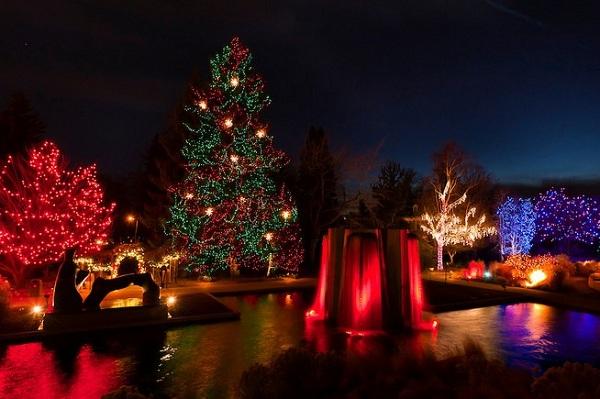 perierga.gr - Χριστουγεννιάτικοι κήποι βγαλμένοι από παραμύθι!