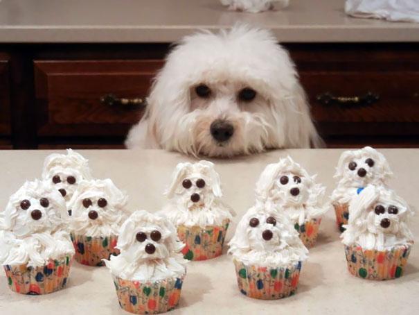 perierga.gr - Πρωτότυπα και λαχταριστά cupcakes!