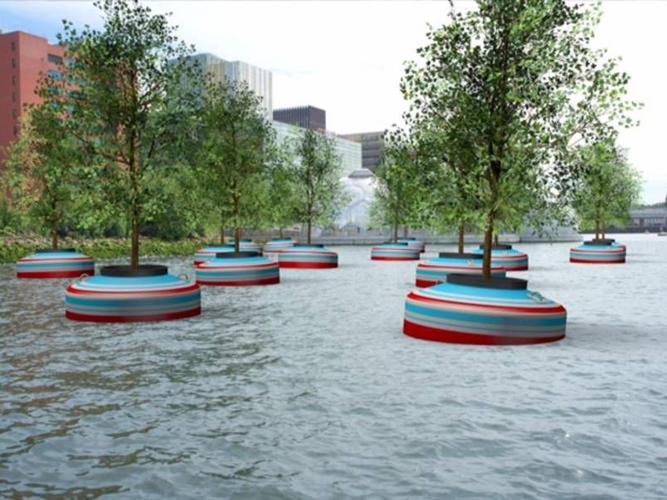 Ασυνήθιστο πλωτό δάσος στο Ρότερνταμ!