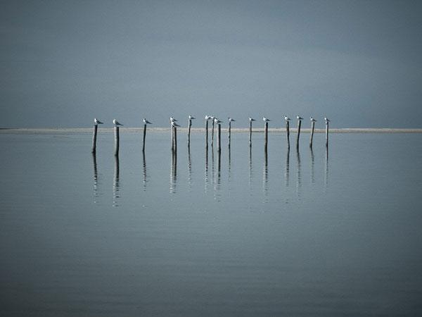 perierga.gr - Η απλότητα μέσα από υπέροχες εικόνες!