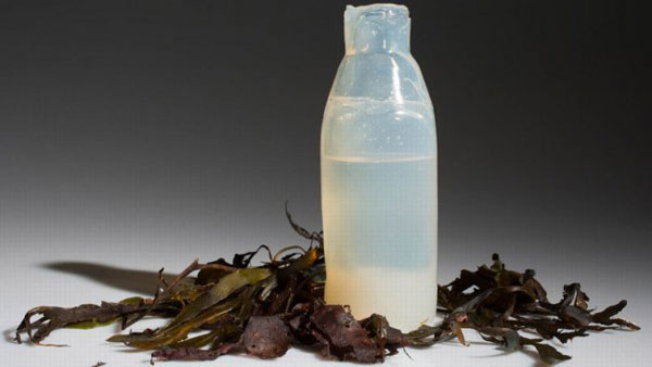perierga.gr - Μπουκάλια νερού από φύκια καταργούν τα πλαστικά