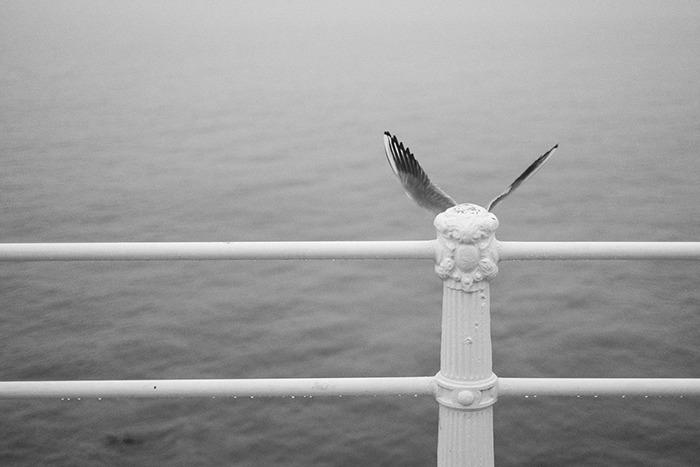 perierga.gr - Όταν το κλικ του φωτογράφου... χτυπά την κατάλληλη στιγμή!