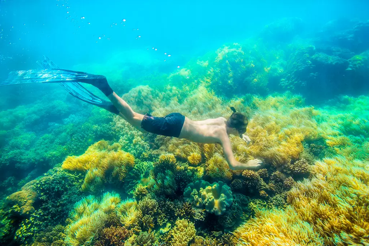 perierga.gr - Πλωτό διαμέρισμα στον μεγαλύτερο κοραλλιογενή ύφαλο!
