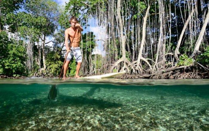 perierga.gr - Παραμυθένιο ιδιωτικό νησί χαρίζεται έναντι 49 δολαρίων!