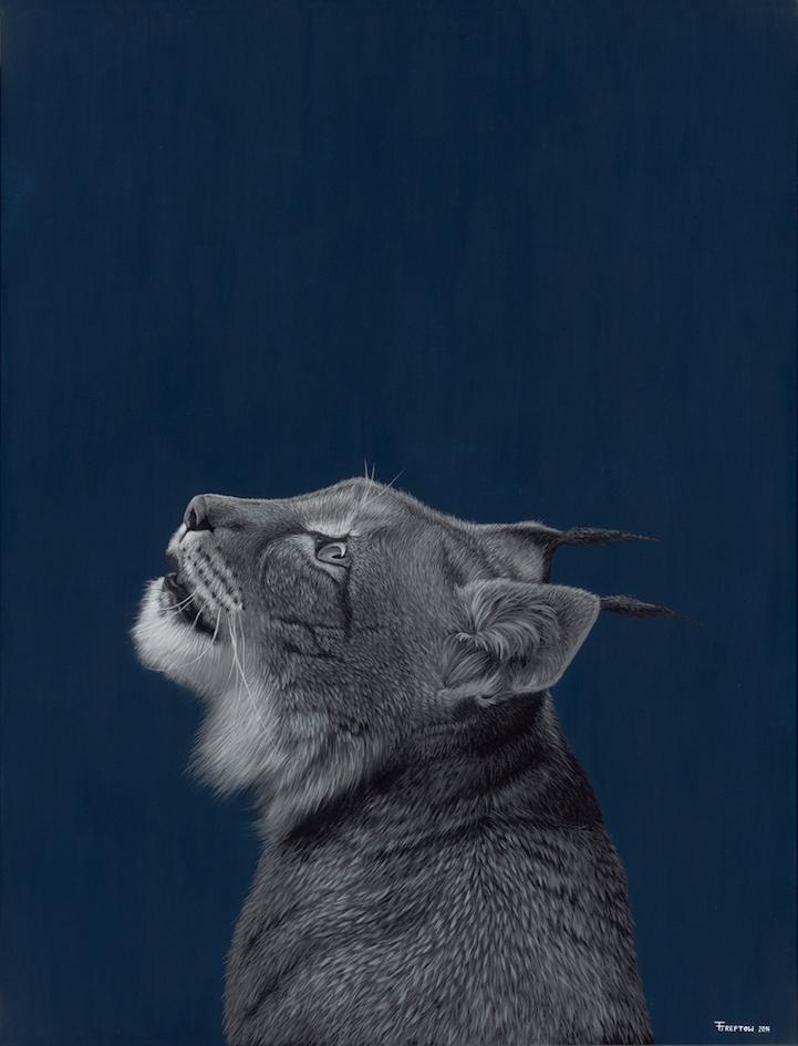 perierga.gr - Υπερρεαλιστικά... πορτρέτα άγριων ζώων!