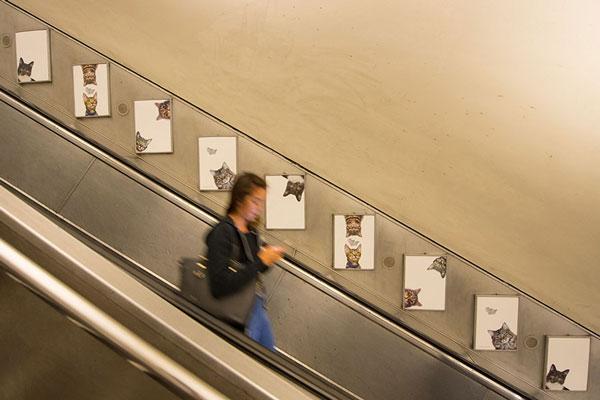 perierga.gr - Εικόνες με γάτες... πλημμύρισαν το Μετρό του Λονδίνου!