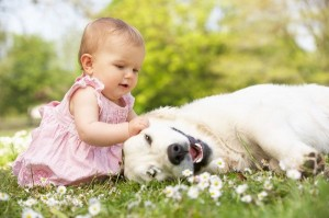 perierga.gr - Τα παιδιά που αγαπούν τα ζώα γίνονται καλύτεροι άνθρωποι!