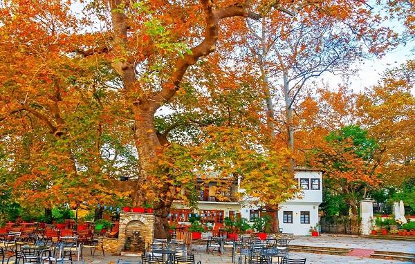 Υπέροχα φθινοπωρινά τοπία από την Ελλάδα!