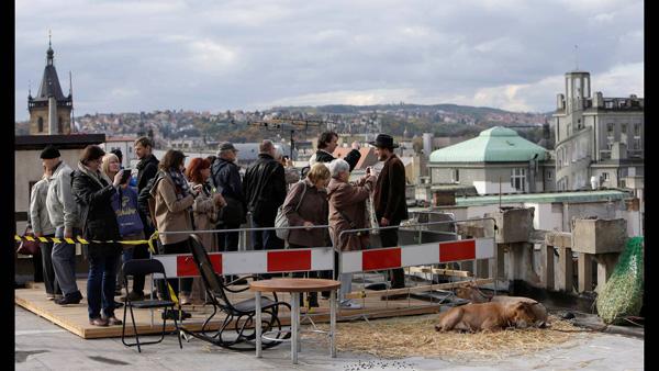 Perierga.gr-Δύο κατσίκες στέλνουν οικολογικό μήνυμα στην Πράγα
