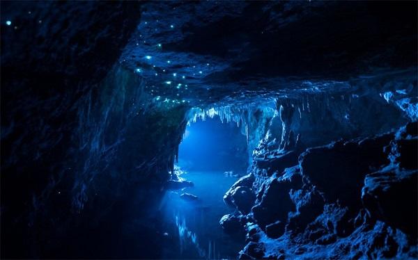 perierga.gr - Πυγολαμπίδες φωτίζουν το εσωτερικό σπηλιάς!