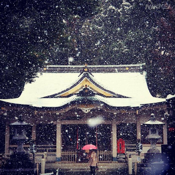 perierga.gr - Χιόνισε στο Τόκιο μετά από 54 χρόνια!