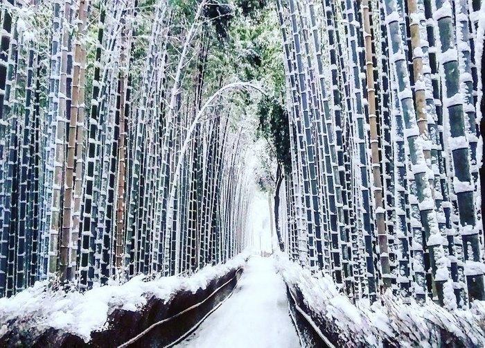 perierga.gr - Το χιονισμένο Κιότο στο φακό του φωτογράφου!