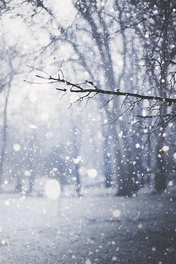 Perierga.gr-Γιατί όταν χιονίζει επικρατεί απόλυτη ηρεμία;