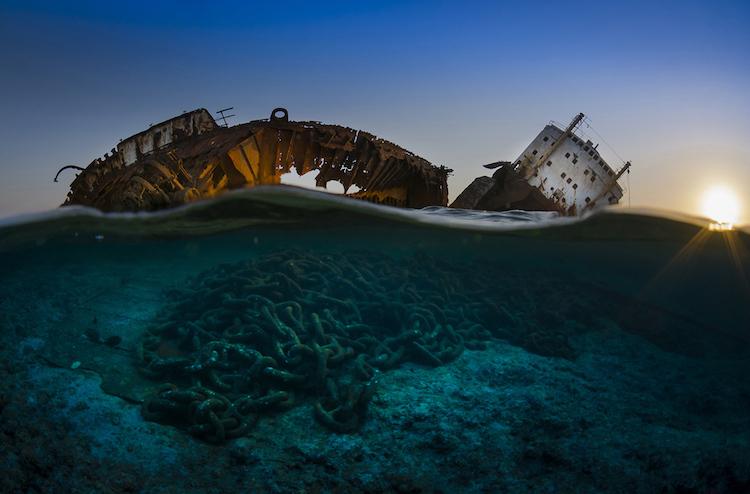 perierga.gr - Νικήτριες εικόνες από τον ετήσιο διαγωνισμό Υποβρύχιας Φωτογραφίας!