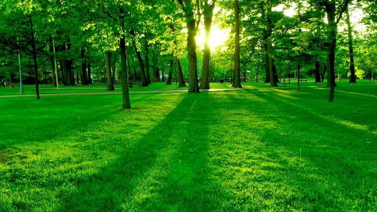 perierga.gr - Η ομορφιά της φύσης σε ένα βίντεο!