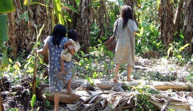 perierga.gr - Φυλή του Αμαζονίου ζει μέχρι τα βαθιά γεράματα χωρίς να παρουσιάσει καρδιαγγειακά προβλήματα!