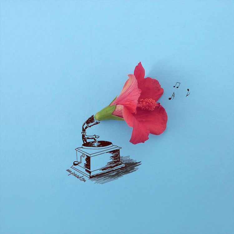 perierga.gr - Έργα τέχνης από αληθινά λουλούδια!