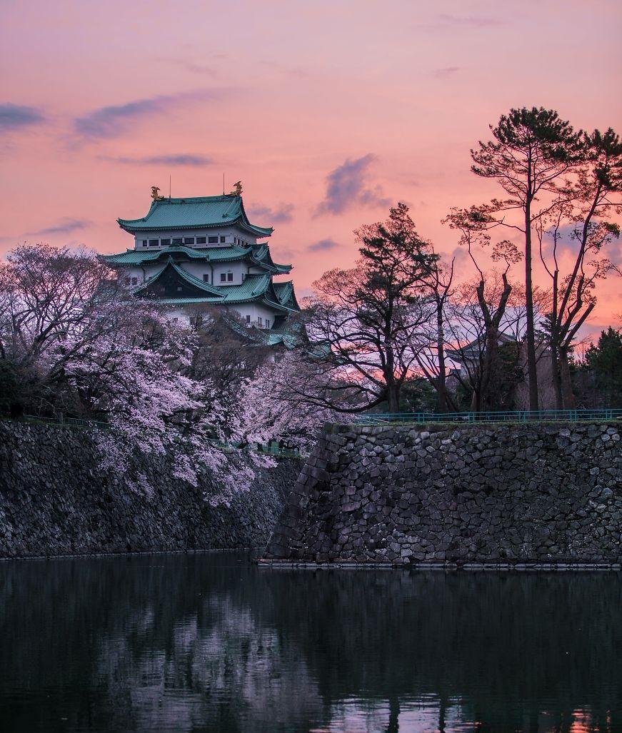 Η άνθιση των κερασιών στην Ιαπωνία σε εκπληκτικές εικόνες!