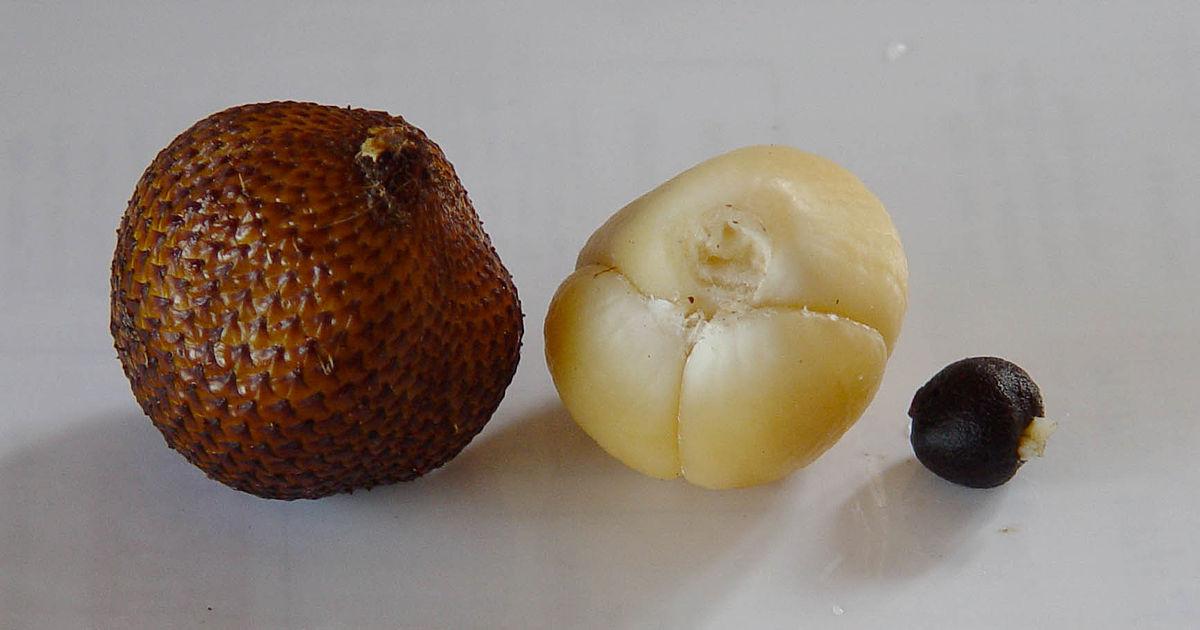 perierga.gr - 20 εξωτικά φρούτα που δεν έχουμε ξανακούσει!